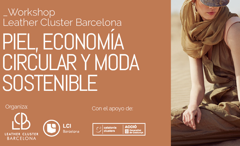 Workshop lçpile economia
